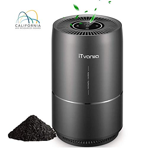 iTvanila Air Purifier, Home Air Purifiers for Smokers Odor Pets, 3 in 1 True HEPA Filter, Quiet in Bedroom, Filtration System Cleaner, Optional Night Light, 2 Years Warranty