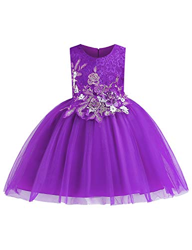 LIEEN Princess Dresses for Girl, Beautiful 3D Embroidered Bodice Aline Full Bottom Tank Tulle Dress Elegant Pageant Church Holiday Party Organza Tutu Ball Gowns Purple Size (150) 7-8 Years ()