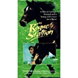 The Rogue Stallion (Wildfire) (1990) [VHS]