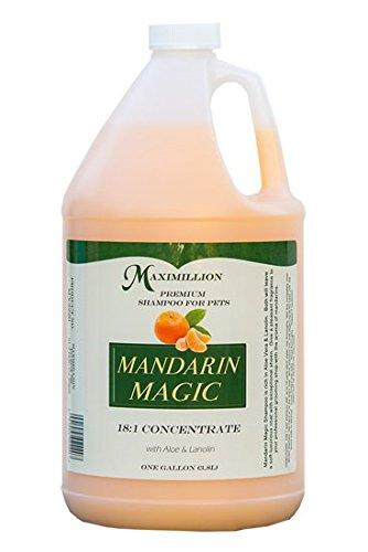 (MAXIMILLION Mandarin Magic Shampoo - Gallon)