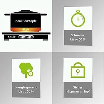 Caso Inducción ECO 2000 Cocina de inducción, 300 x 380 x 65 mm, 2000 W, 230 MB/s, negro, acero inoxidable: Amazon.es: Hogar
