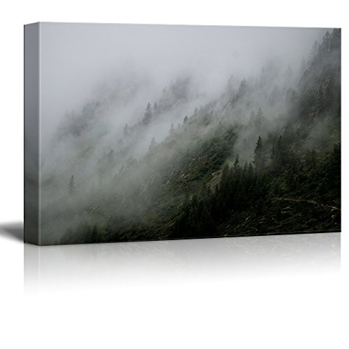Forest and Mountain with Fog Gallery