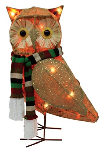 Celebrations 50371-71 Led Owl Yard Art, Clear, Mdf, 21'' by Celebrations