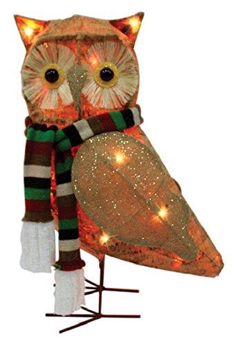 Celebrations 50371-71 Led Owl Yard Art, Clear, Mdf, 21'' by Celebrations