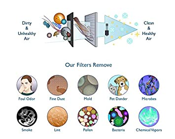 Merchandise Mecca Premium Replacement Filter for Coway AP1512HH Air Purifiers 3304899 with 2 Carbon Filters 1 HEPA Filter and 2 Carbons