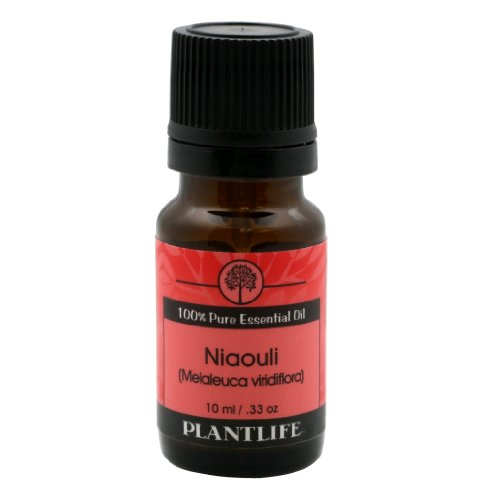 Niaouli Essential Oil (100% Pure and Natural, Therapeutic Grade) from Plantlife