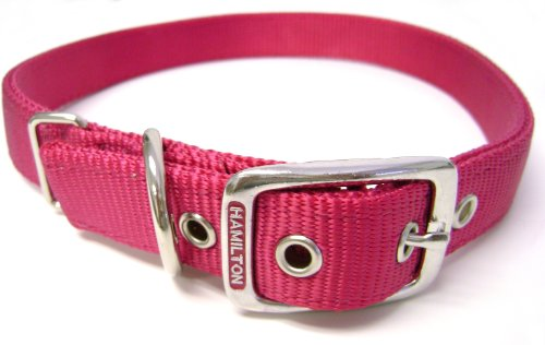 Hamilton Thick Nylon Deluxe Dog Collar, 1-Inch by 24-Inch Double, Raspberry