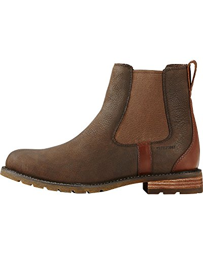 Brown Ariat H2O Wexford Work Boot Women's pwqXwv1