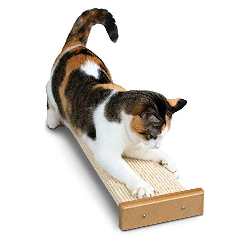 - SmartCat Bootsie's Combination Scratcher