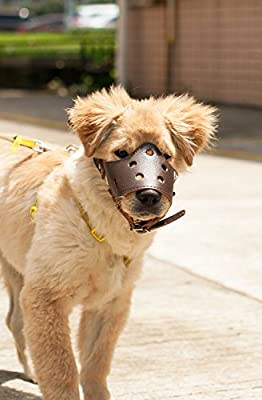 Adjustable Leather Dog Muzzles, Lightweight Durable, for Anti-biting Anti-barking Anti-chewing Safety Protection