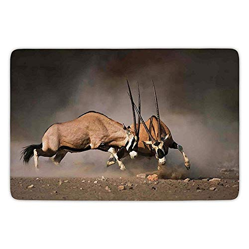 Bathroom Bath Rug Kitchen Floor Mat Carpet,Wildlife Decor,Fight Battle Between Two Gemsbok on Plains of Etosha Namibia Savage Safari,Brown Tan,Flannel Microfiber Non-Slip Soft Absorbent