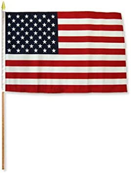 AZ FLAG Bandera de los Estados Unidos 45x30cm con Palo de Madera - Lote de 10 Bandera Americana - USA - EE.UU 30 x 45 cm: Amazon.es: Jardín