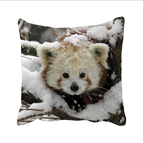 - Dolores Joule Red Panda_ Pillow Case Decorative Pillow Cover Simple Cushion Throw Pillowcase