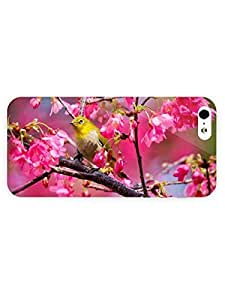 3d Full Wrap Case for iPhone 5/5s Animal Bird In A Blossomed Tree