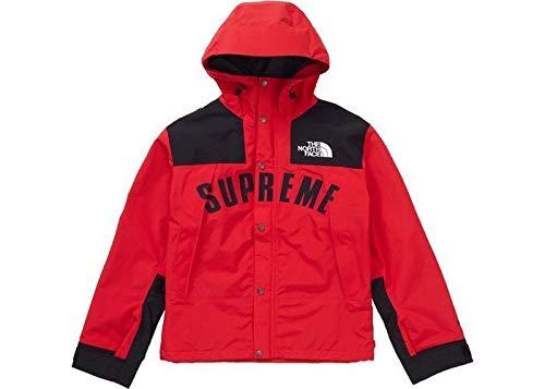 正規 L Supreme The North Face Arc Logo Mountain Parka 赤 19ss Week5 シュプリーム ノースフェイスコラボ