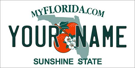 BNS Personalized Bicycle/Toy Car/Wagon/Golf Cart License Plate Tag (Florida)