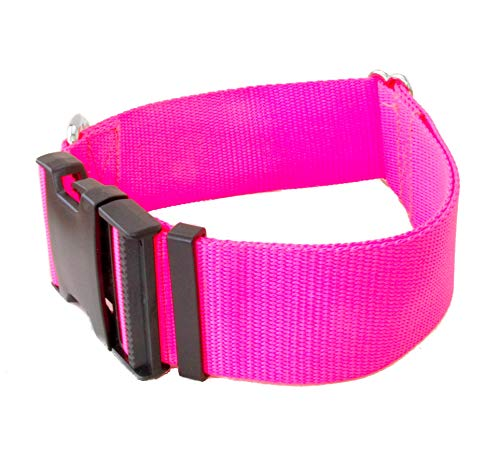 2 Inch Buckle Dog Collars - Heavy Duty Nylon (2