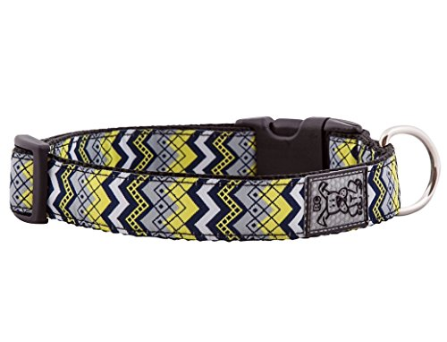 RC Pet Products 1-Inch Adjustable Dog Clip Collar, Large, Soho
