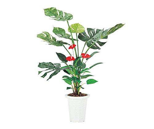 人工観葉植物 モンステラ&アンスリューム /7-3401-03 B07BL4SW2V