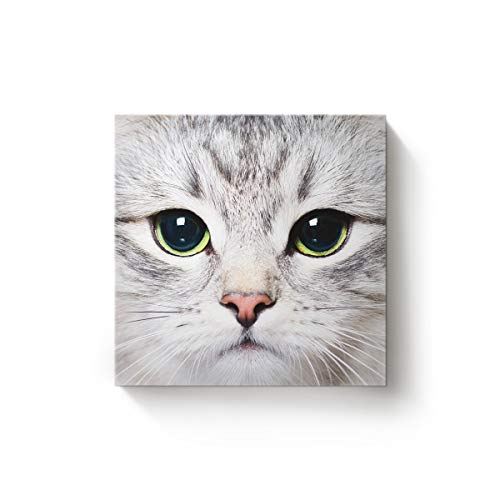 EZON-CH Square Canvas Wall Art Oil Painting Christmas Office Home Decor,Grey 3D Cat Face Animal Pattern Artworks,Stretched by Wooden Frame,Ready to Hang,20 x 20 Inch ()