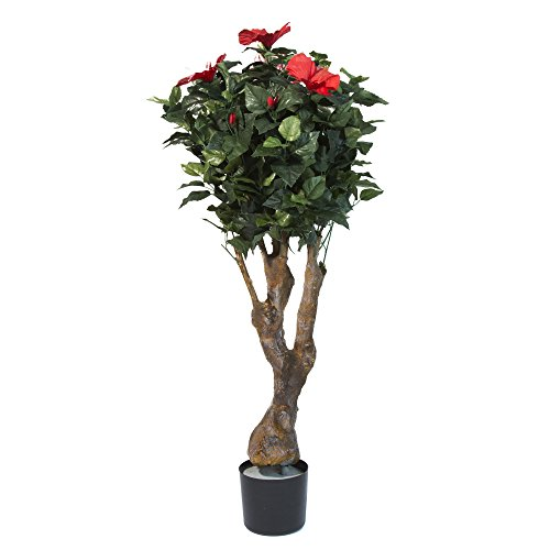 Home Pure Garden 48 Inch Hibiscus Tree with Flowers ()