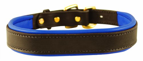 Perri's Padded Leather Dog Collar, Havana/Blue, Large1.25