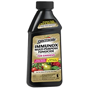 Spectracide 100507462 Immunox Multi Purpose Fungicide Spray Concentrate, 16 fl oz