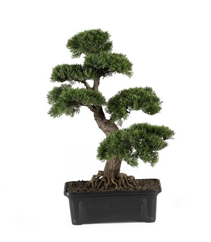 Nearly Natural 4103 Cedar Bonsai Silk Plant, 24-Inch, Green by Nearly Natural