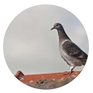 alfombrilla de ratón palomas - ronda - 20cm