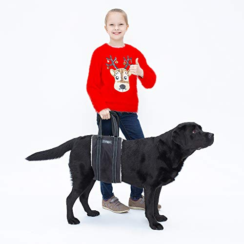 Clumsy-Pets Portable Dog Lift Harness – Support for Rear Legs & Hips – Extra Padded Handles for Easy-Walk and Fast Recovery – Black Large Size