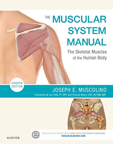 The Muscular System Manual: The Skeletal Muscles of the Human -