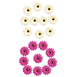 Fityle 20 Pieces Handmade Large Artificial Gerbera Silk Daisy Flowers Heads DIY Scrapbooking Wedding Party Home Decorations Purplish Red & Champagne 10