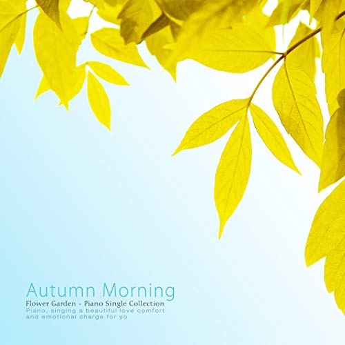 Morning Flower - Autumn Morning