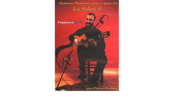 Guitarra Flamenca paso a paso 4