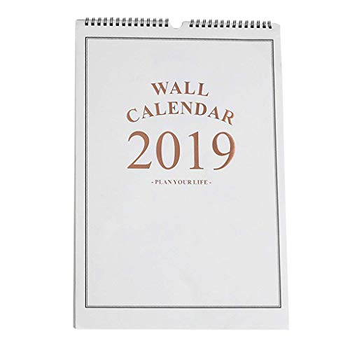 Calendarios 2019 Calendario de Pared Simple Agenda Organizador Calendario Calendario Planificador Calendario de Pared (Color...