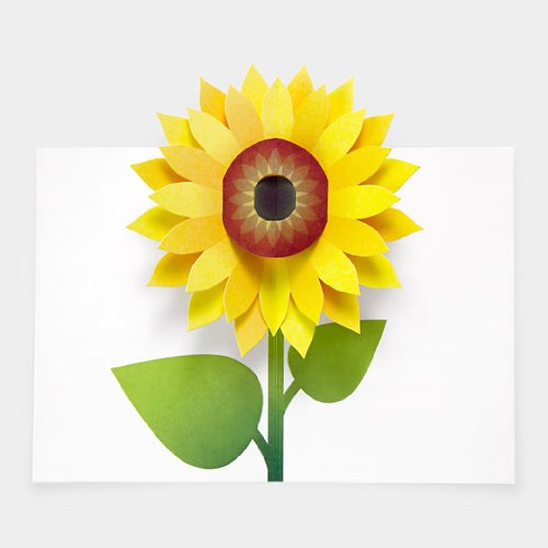Sunflower Pop Up Note Cards, Health Care Stuffs
