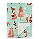 Boritar Soft Baby Blanket with Minky Raised Dotted, Grey Arrow 30 x 40 Inch