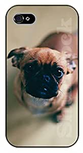 iPhone 4S Intrigated dog - black plastic case / dog, animals, dogs
