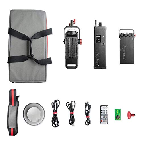 Aputure Light Storm LS COB 300D c300d Daylight LED Video Light Kit with Bowens Mount/V-Mount Plate and Carrying Bag ()