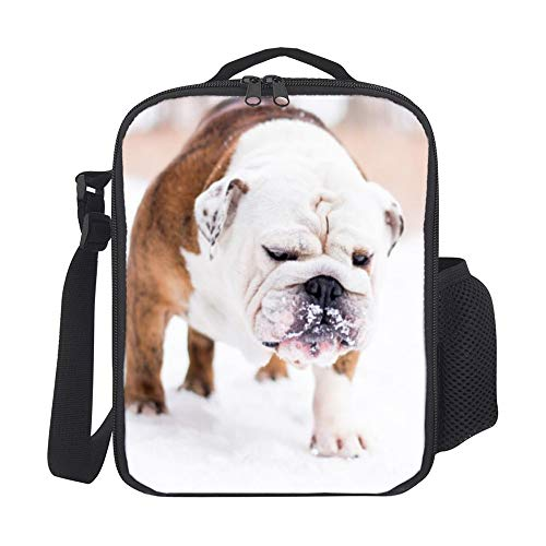 Athena Carroll LunchBags Meal Bag Portable Thermal Insulation and Cold Preservation Dinner Bag Dog Mammal Vertebrate Dog Breed Canidae Old English Bulldog Bulldog Toy Bulldog Olde English Bulldog