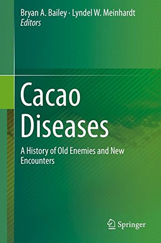Witch Broom Crop (Cacao Diseases: A History of Old Enemies and New Encounters)