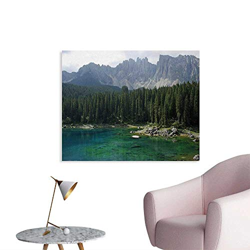 Tudouhoho Nature Cool Poster Aerial View of Pine Forest by The Lake Beneath Mountain Pastoral Landscape Wallpaper Dark and Jade Green W32 xL24