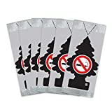 Little Trees Car Air Freshener 6-Pack (NO Smoking): more info