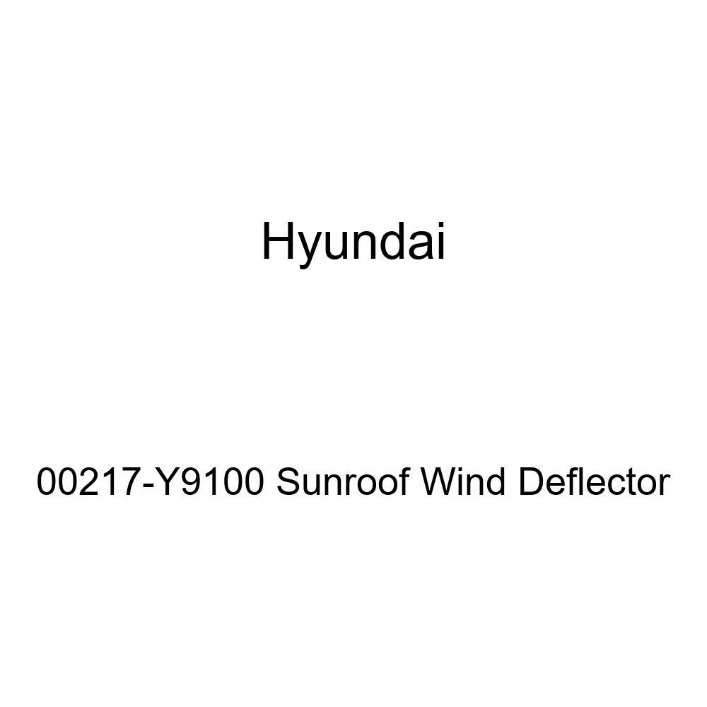 Genuine Hyundai 00217-Y9100 Sunroof Wind Deflector