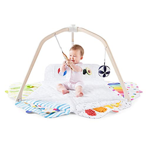 The Play Gym by