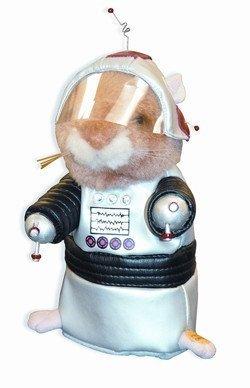 Hal 2001 Space Odyssey dancing robot hamster