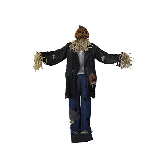 Unknown Scarecrow Man Standing 60