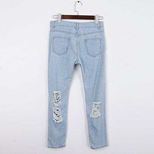 Homyl S 2 Femme XL Bleu couleurs Jeans xcPxq0zv8w