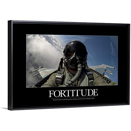 (Kate Lillyson Floating Frame Premium Canvas with Black Frame Wall Art Print Entitled Military Poster: Self-Portrait of a Pilot in The Cockpit of a F-15E Strike Eagle 24