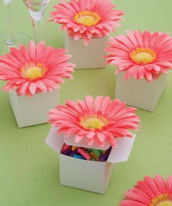 Perfectamente Plain Collection Classy rosa Gerbera Daisy adornado caja regalos: Amazon.es: Hogar